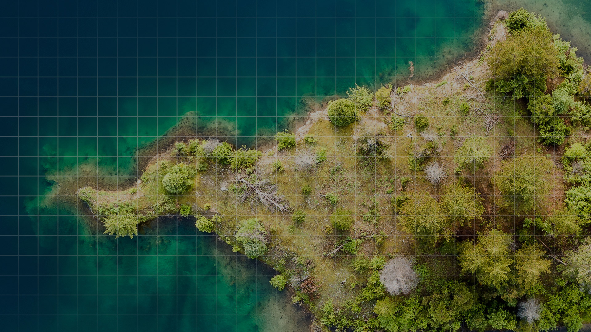 birds eye view of tree covered island with surrounding sea