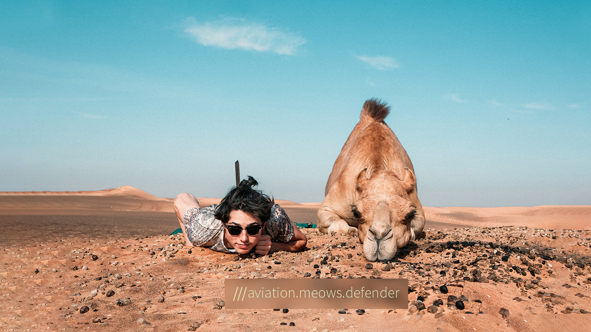 tourist and camel pose lying down in the desert at 3 word address aviation.meows.defender