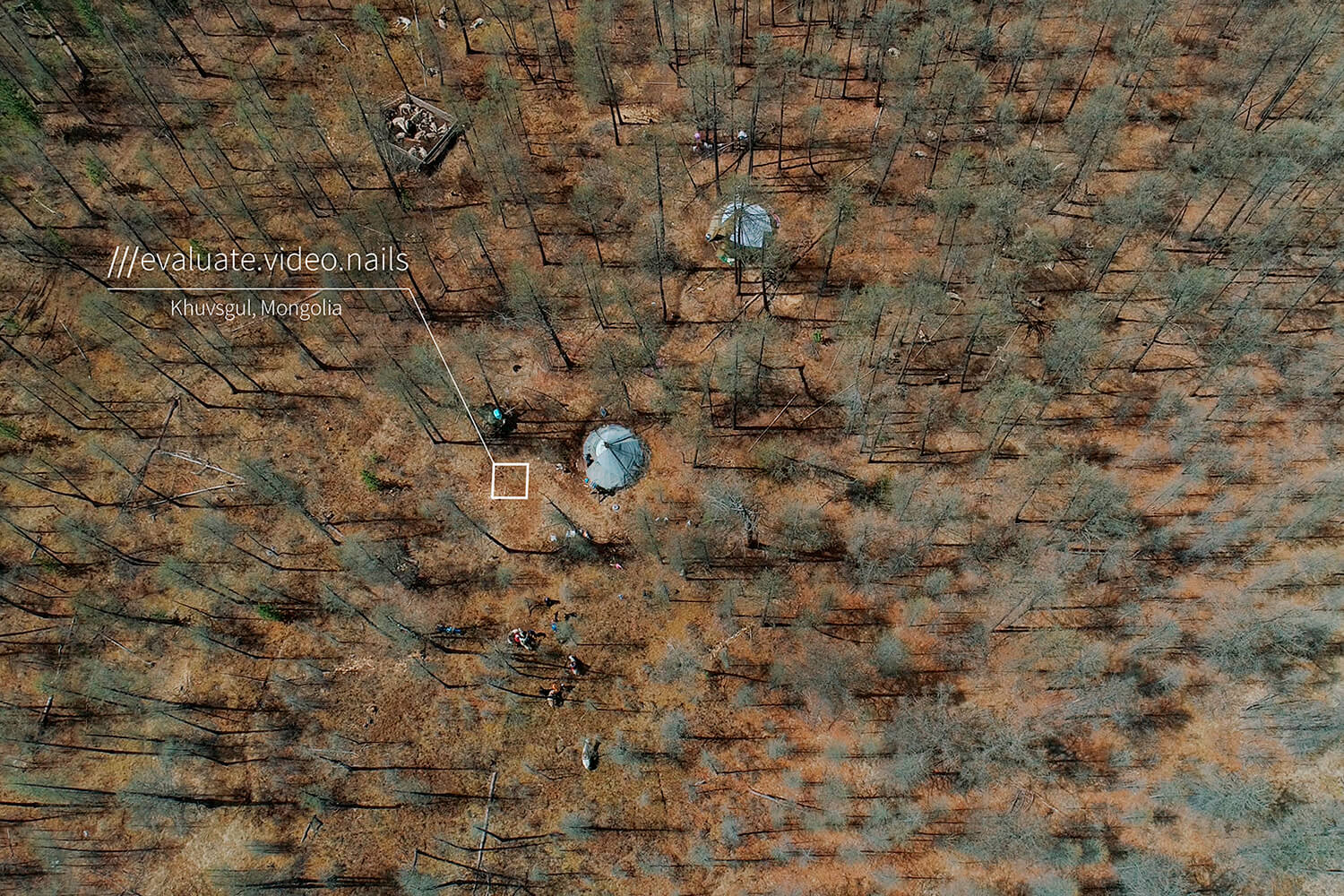 mongolian campsite in middle of forest with no pathway at 3 word address evaluate.video.nails
