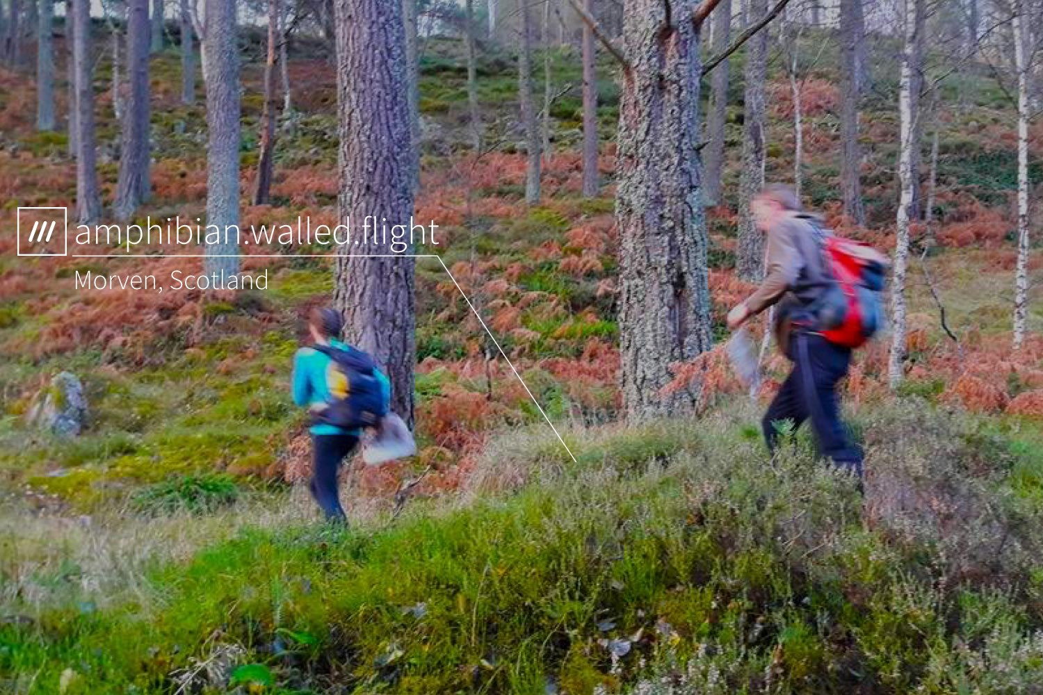 blurry kids running through a forest at 3 words address amphibian.walled.flight