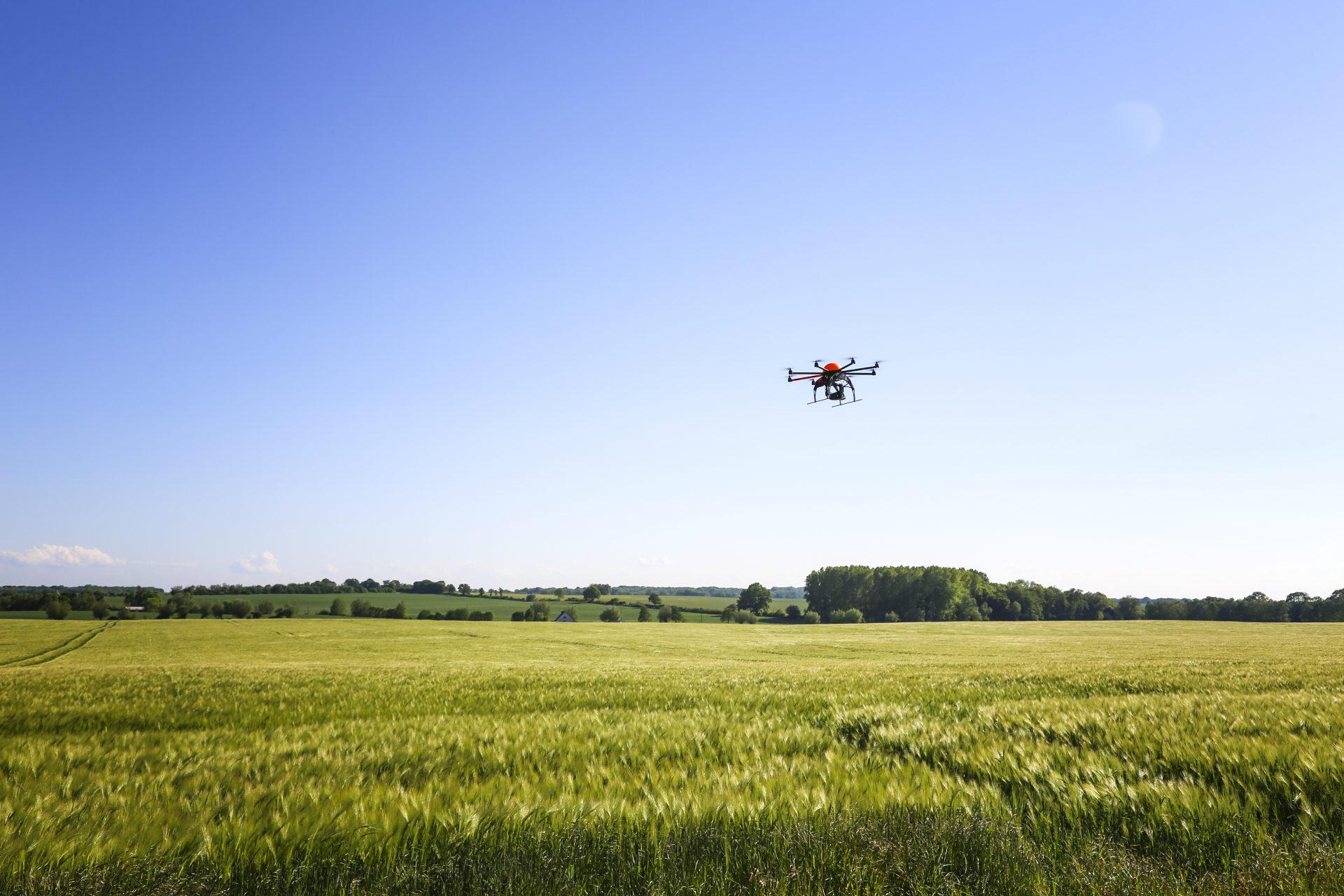 drone flying through a grassy field