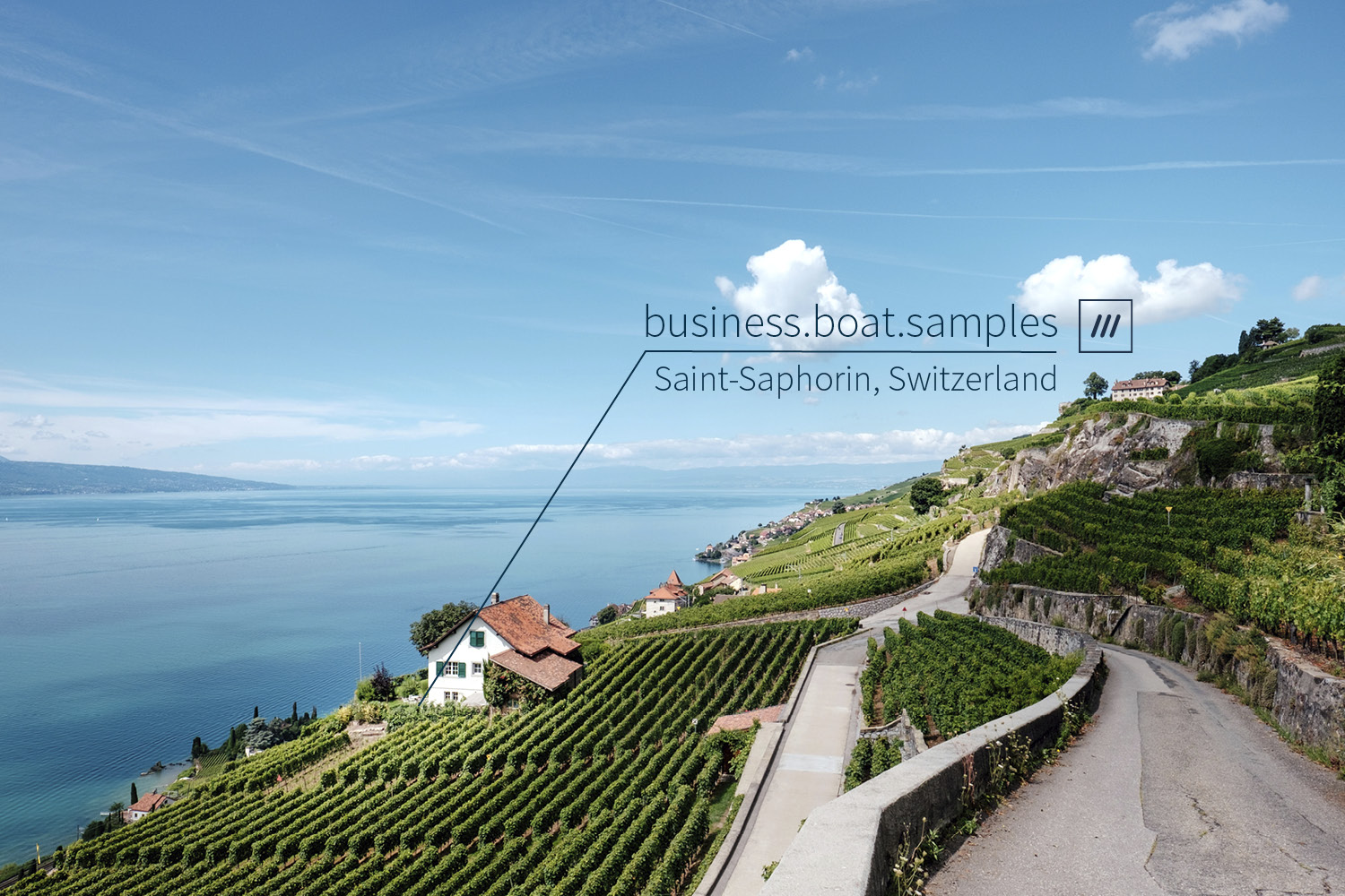 vineyards covering the landscape with sea in background at 3 word location business.boat.samples