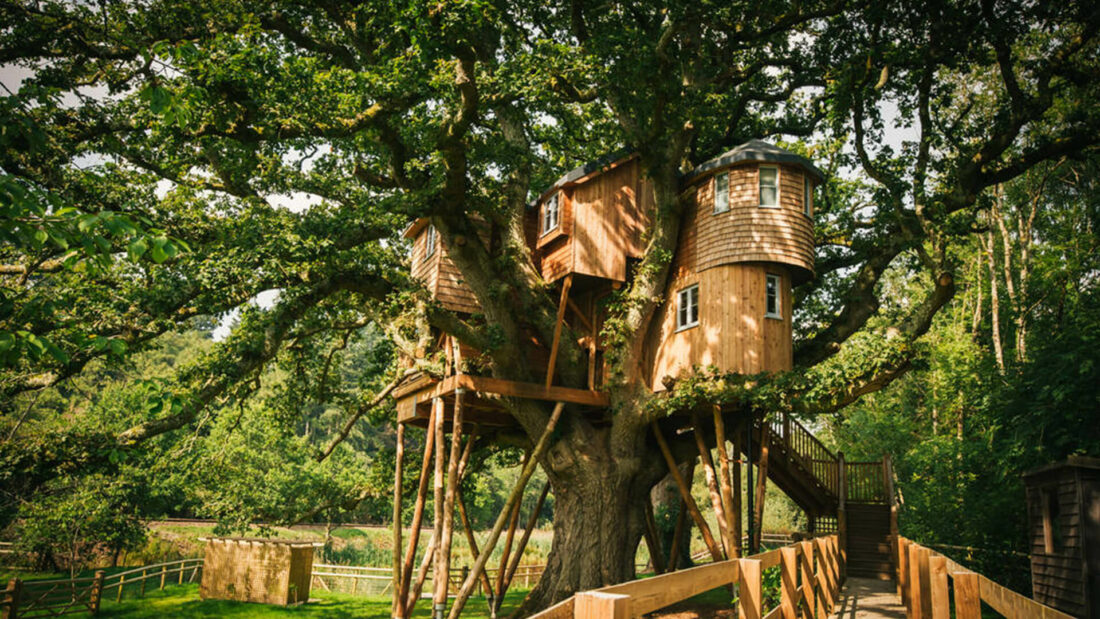wooden tree house in forest