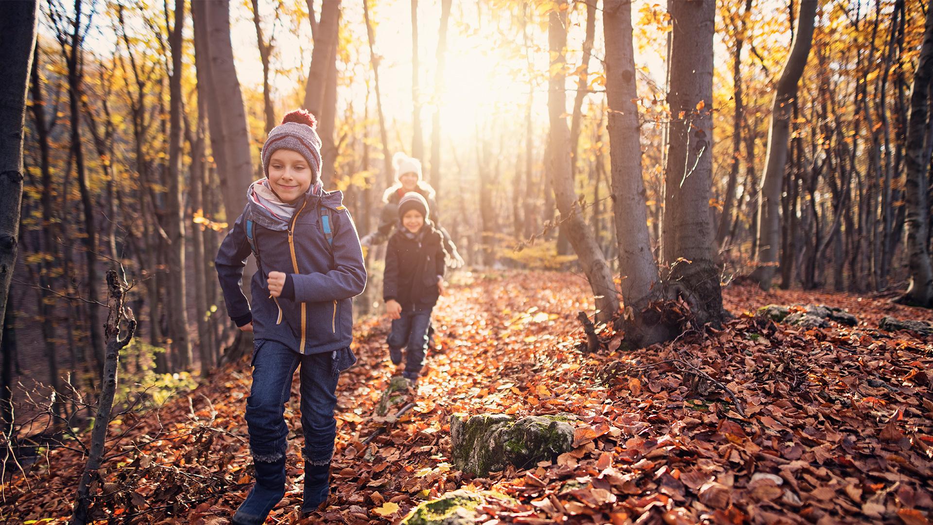 Kids running through a forest in autumn