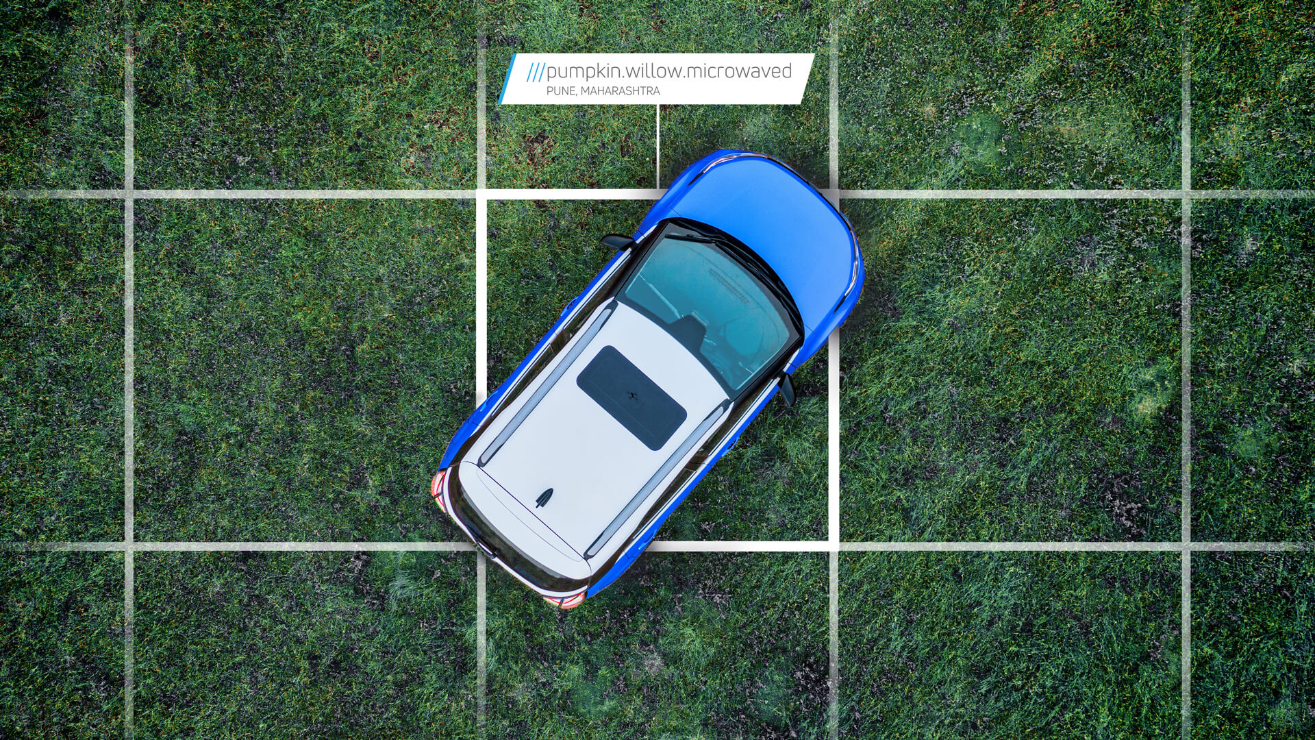 Birdseye view of a car on a grass track at 3 word location Pumpkin.Willow.Mircowaved